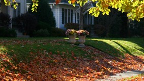 Autumn = Less Daylight. Have You Prepared Your Home?